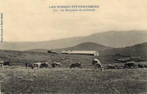 Carte Postale illustrant la Marcairie du Hohneck